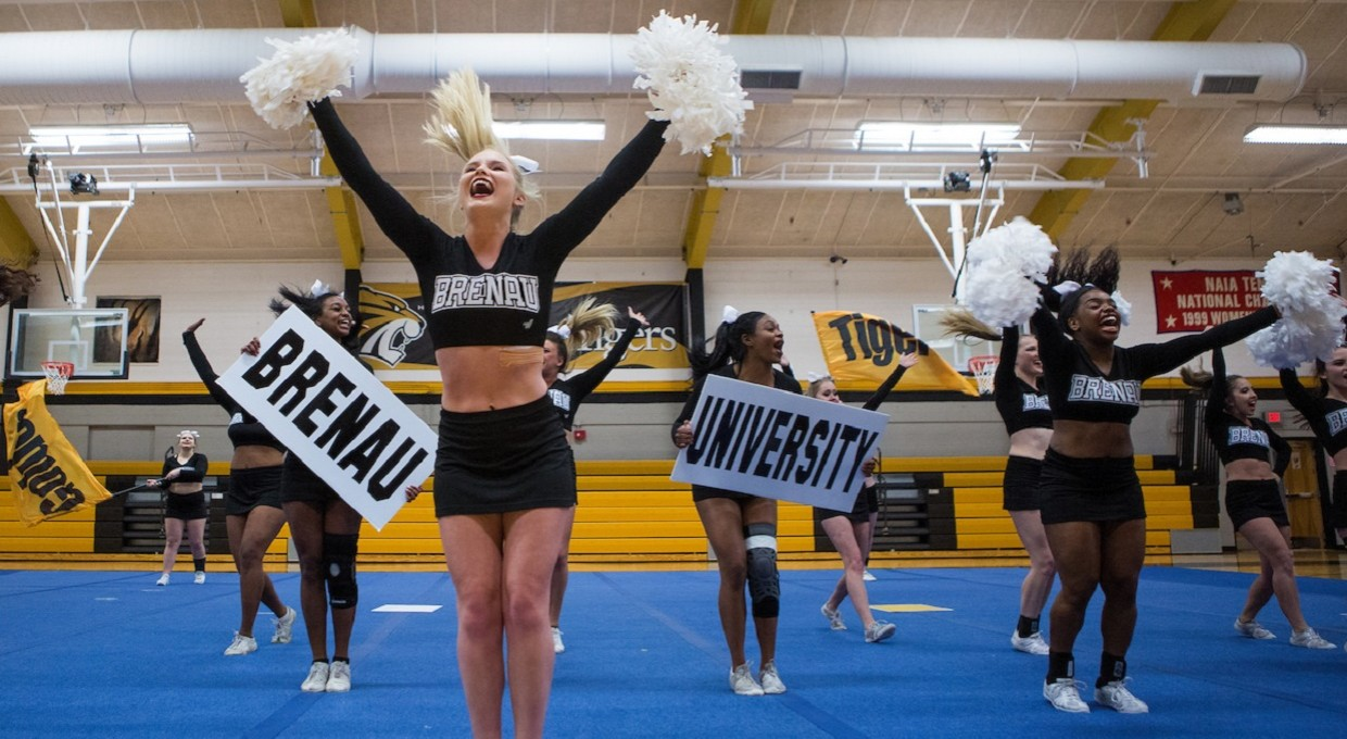 Photo for Record Number of Brenau Student-Athletes Competing in 2017-18