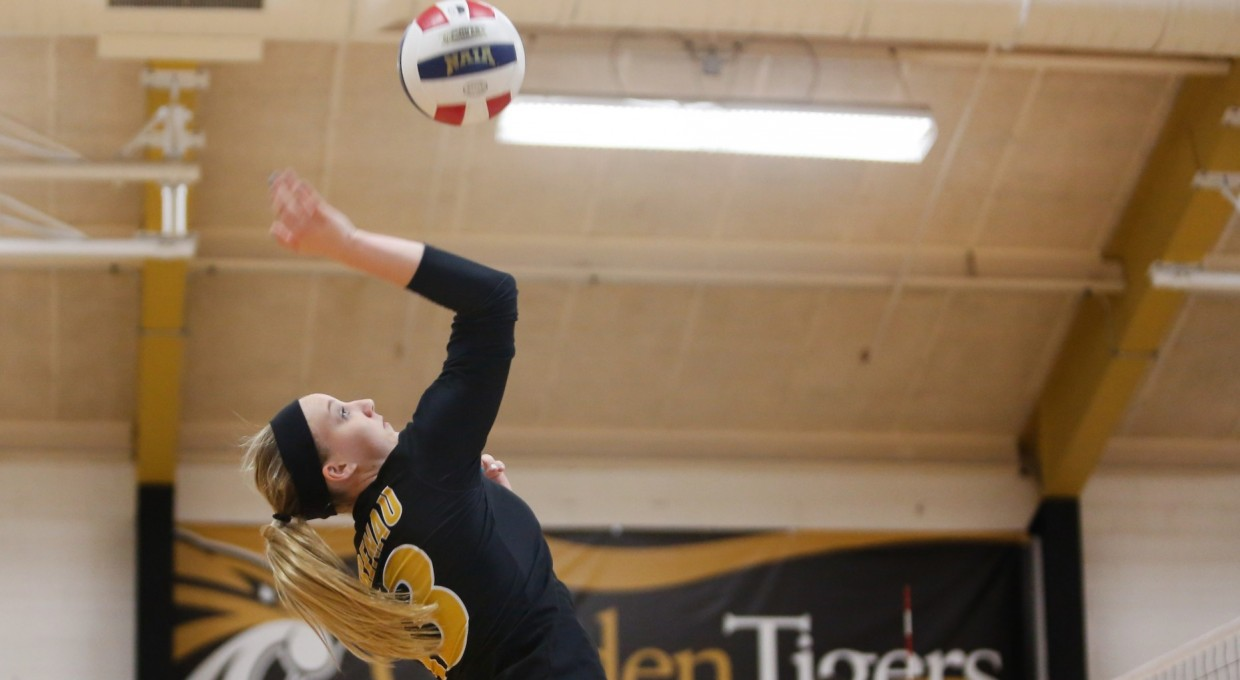 Photo for Volleyball Splits to Open 2017 Season